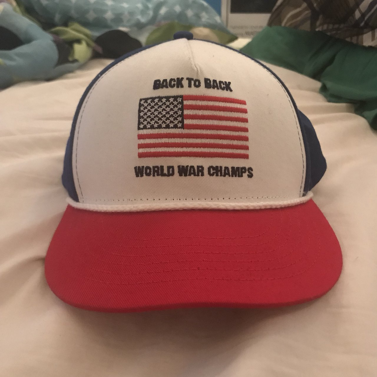 "f2194ea3d11 Rowdy Gentleman ""Back to Back World War Champs"" SnapBack - - Depop"