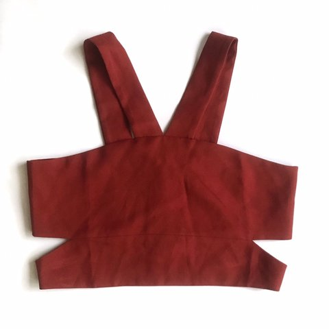138239bdc02dc Missguided burnt orange crop top with classy sexy vibe and 8 - Depop