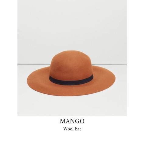 7fb63ade69e53 Mango wool hat with tortoiseshell buckle Never worn with  hm - Depop