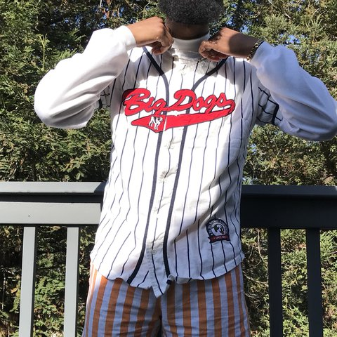 750f163d38f Vintage Big Dog pinstriped baseball jersey in great Small in - Depop