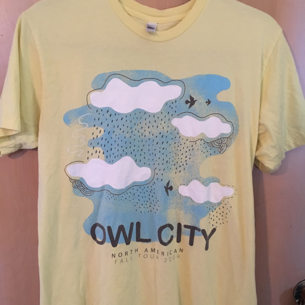 so, i didn't actually see owl city in 2009  my    - Depop