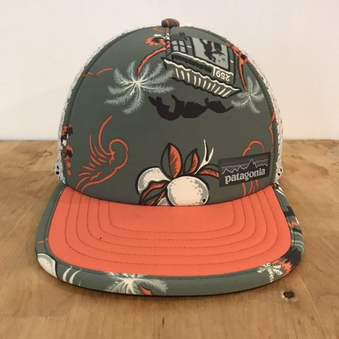 88135fc2 PATAGONIA DUCKBILL TRUCKER HAT! Print is hard to find now a - Depop