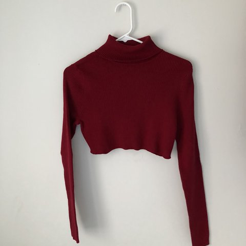 aef7b1055112d  guessbvby. last year. United States. Long Sleeve Turtle Neck • Ribbed Top  • Raw Hem  Crop Top