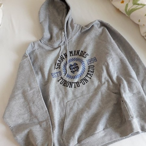 6ebeb293 shawn mendes grey hoodie with kangaroo pocket in the the on - Depop