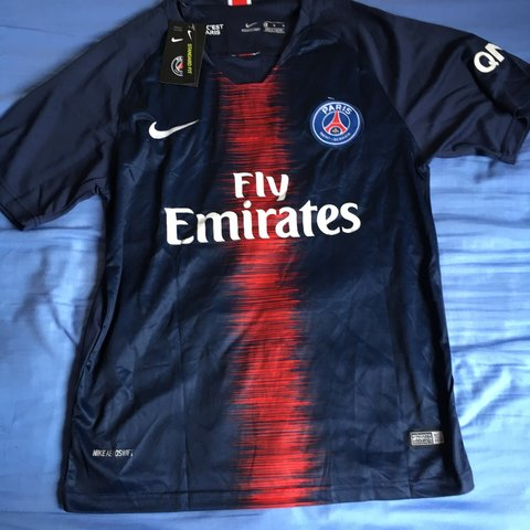 1d4b6af5925 2018/2019 Paris saint germain football club home shirt with - Depop