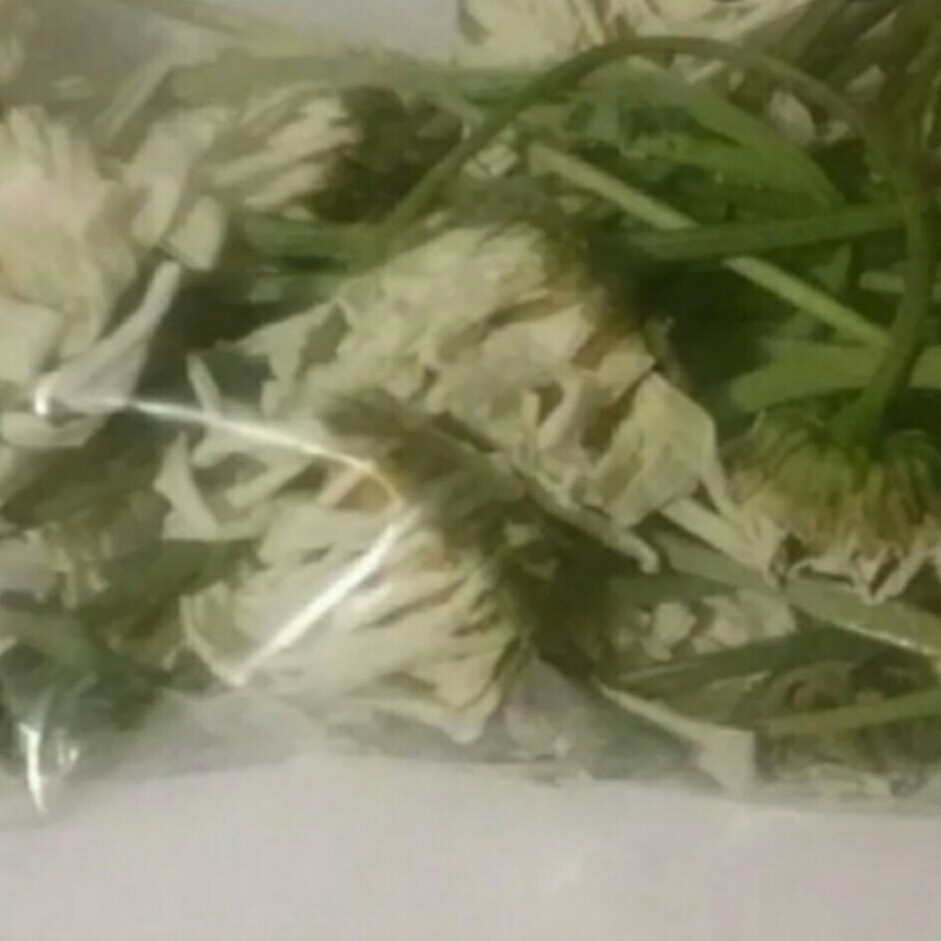 Wild Daisies for Witches! Pagan/Wiccan Herbs Daisies    - Depop