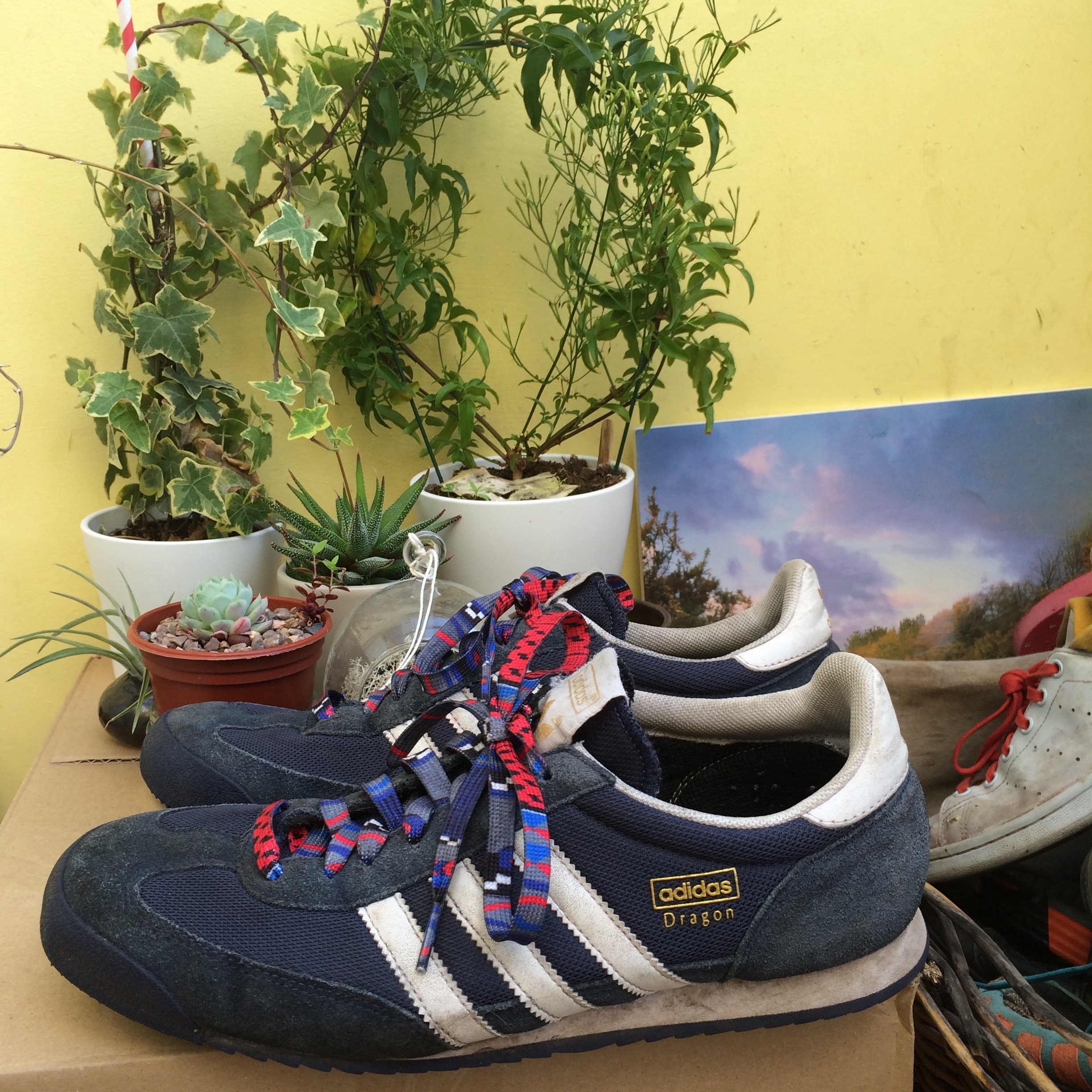 Adidas Dragon navy blue trainers. Mens 10. Used but...