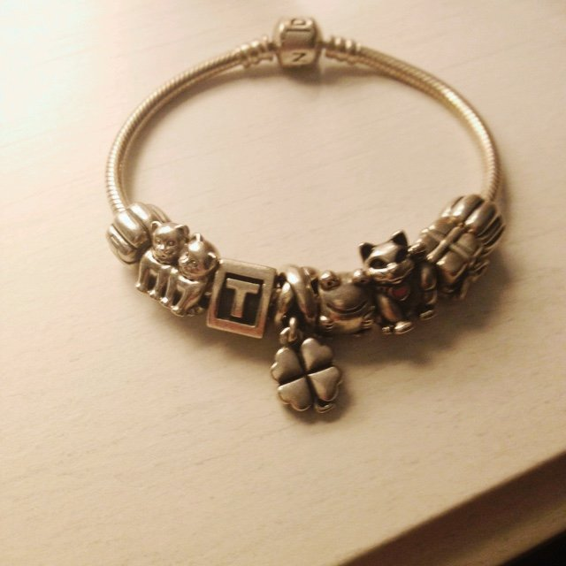 Pandora Bracelet With 6 Charms And To Stoppers Charms Cat Depop