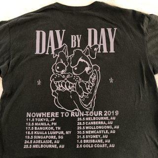 Day By Day sflhc Japan/Australia tour tee Two hard    - Depop